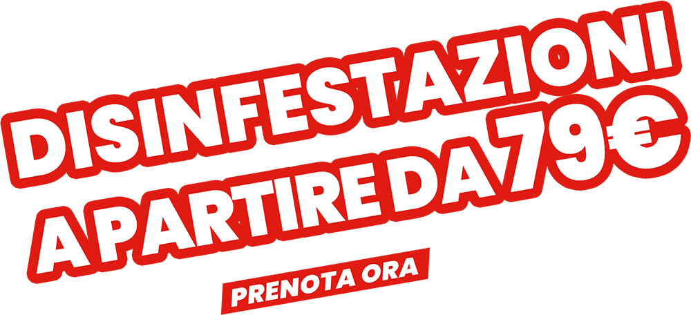 Zucchet SRL Disinfestazione e Derattizzazione Roma